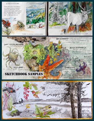 multi media sketchbooks