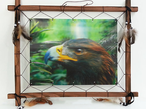 amazing 3d frame-Eagle