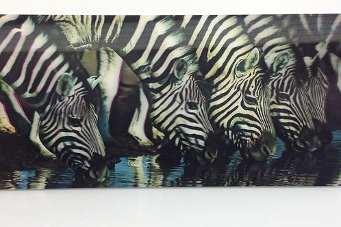 3D Picture Frame Zebra