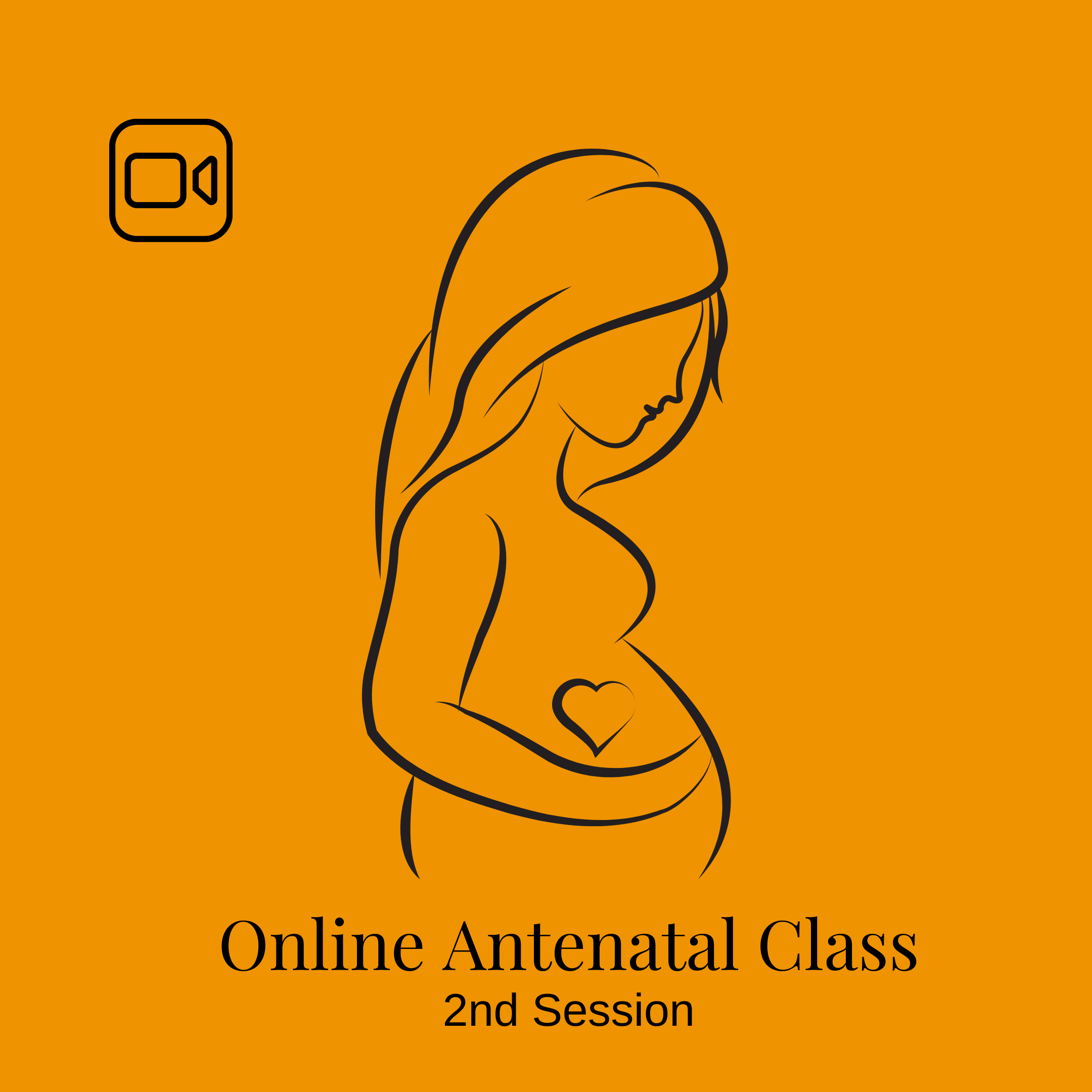 Online Antenatal Class: 2nd Session