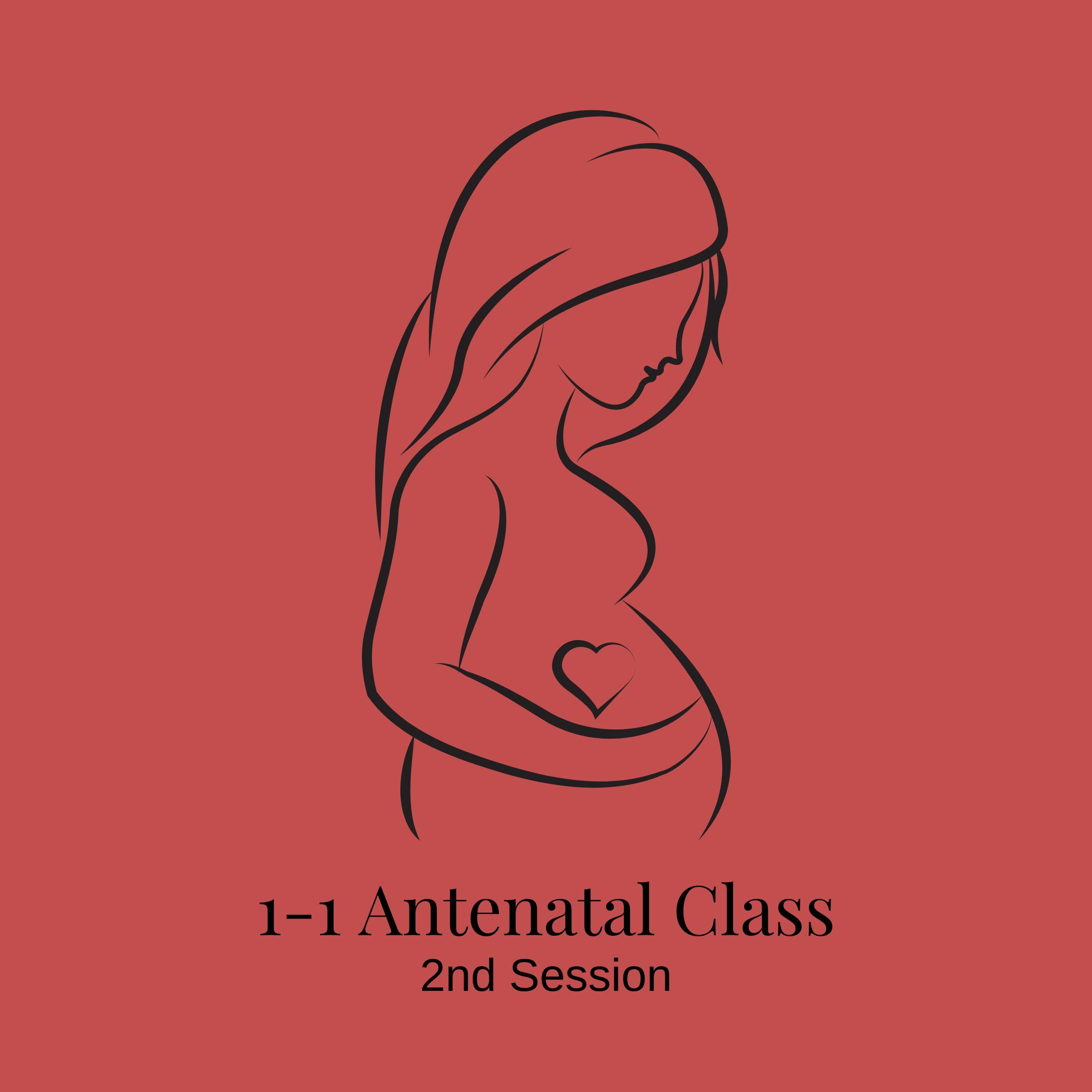 1-1 Antenatal Class: 2nd Session