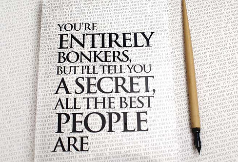 Writing Book - You're Entirely Bonkers...