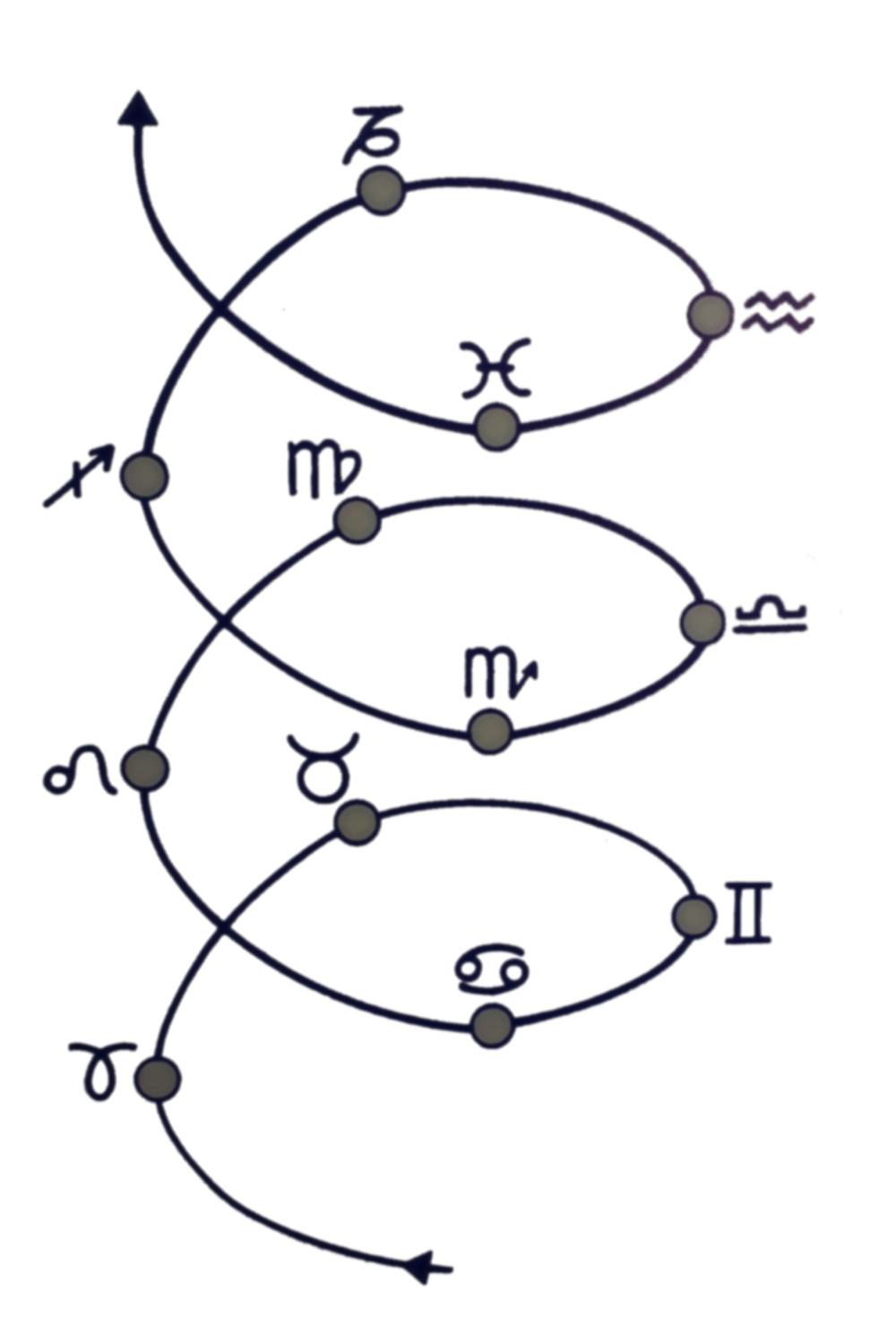 Espiral Evolutiva Zodiacal