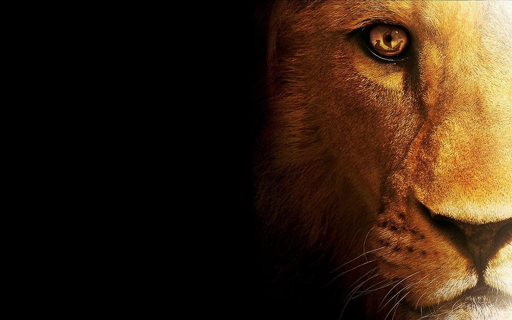 O signo de Leão é regido pelo Sol