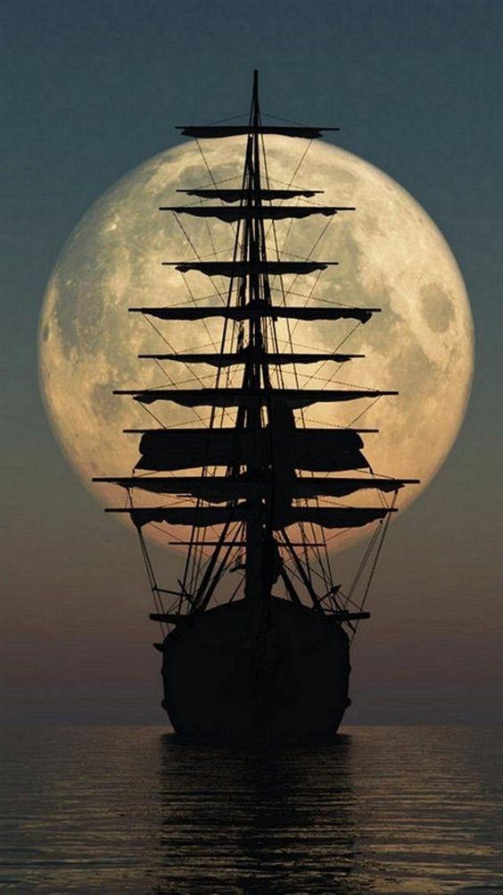 Lua nas casas astrológicas
