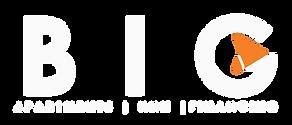 BIG Logo 2019 - White.png