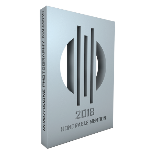 monovisions_awards_2018_hm.png