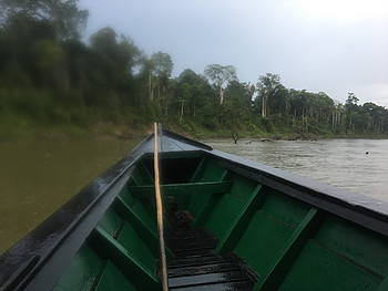 View from boat on river