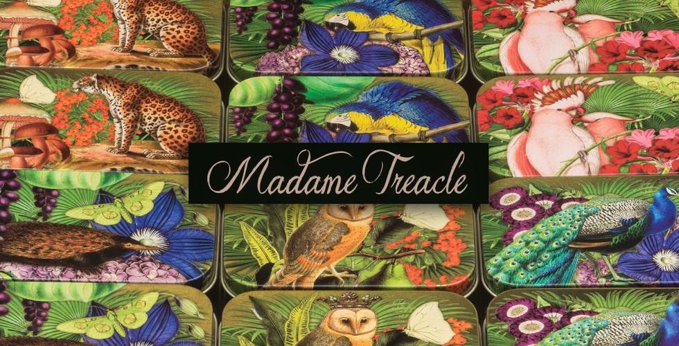 Elite tins Madame Treacle cards tin pock