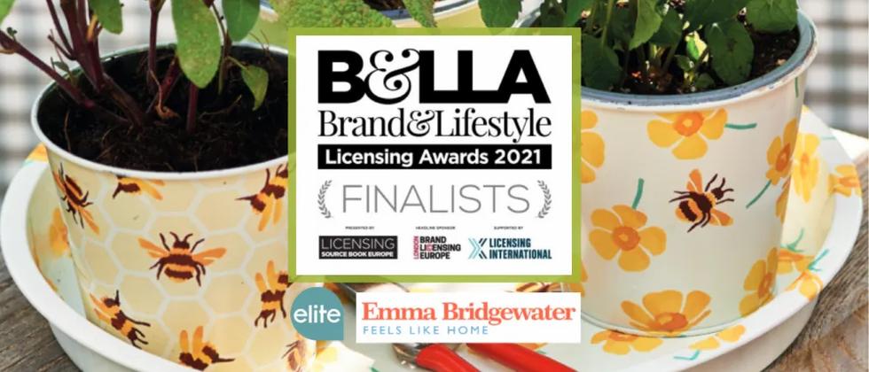 Elite Tins - Emma Bridgewater, finalist