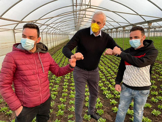 Assessore Caputo visita l' Agrovivaistica Cardillo