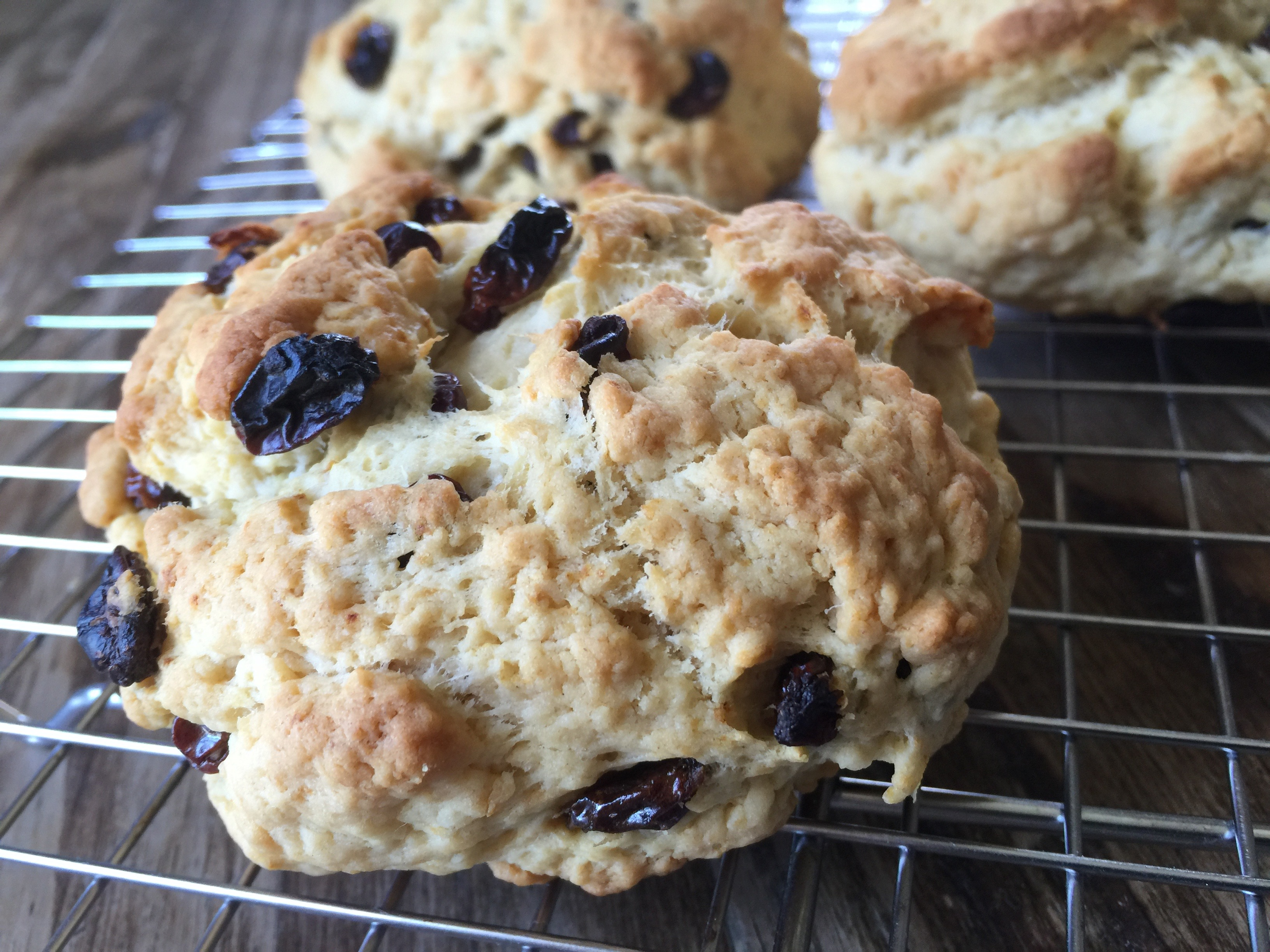 Organic Butter Raisin Scones