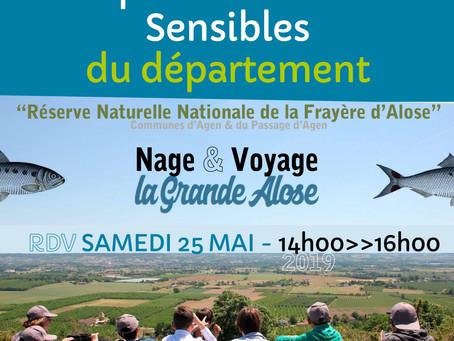 Nage & Voyage la Grande Alose !