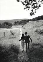 susie bick et nick cave irlande août 1998