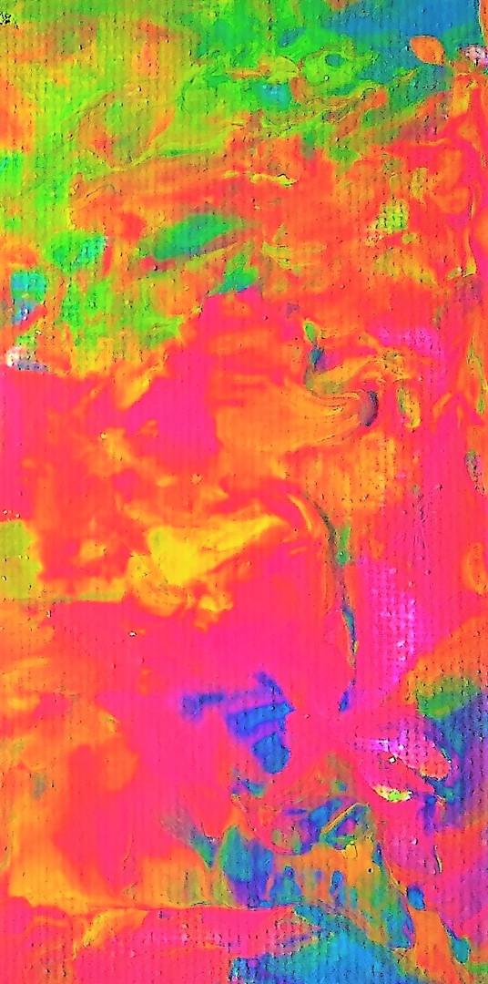 Rainbow Anemone