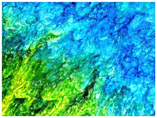 Blue Moon Provence 1