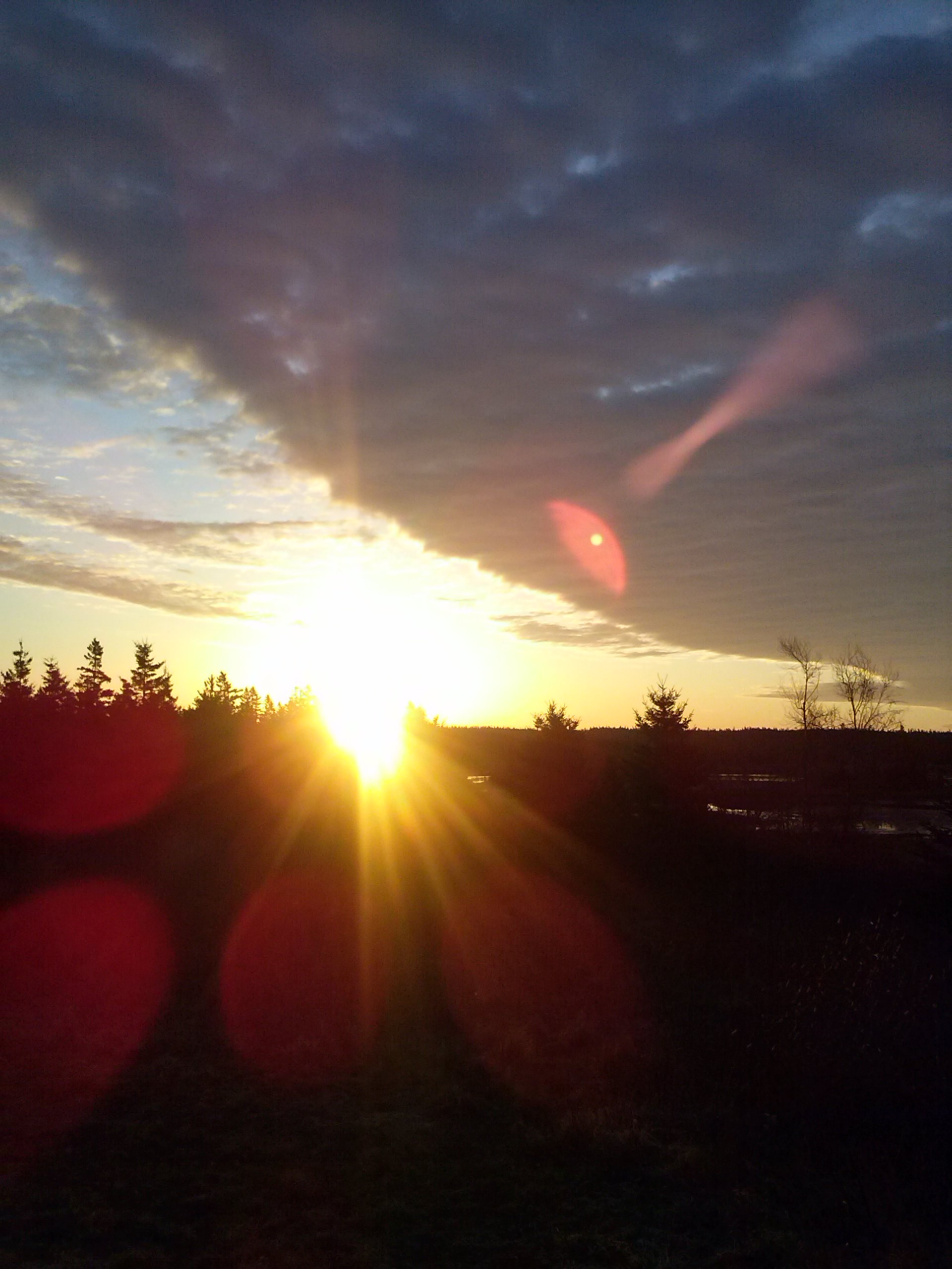 Sunny Seas Nature Park sunrise