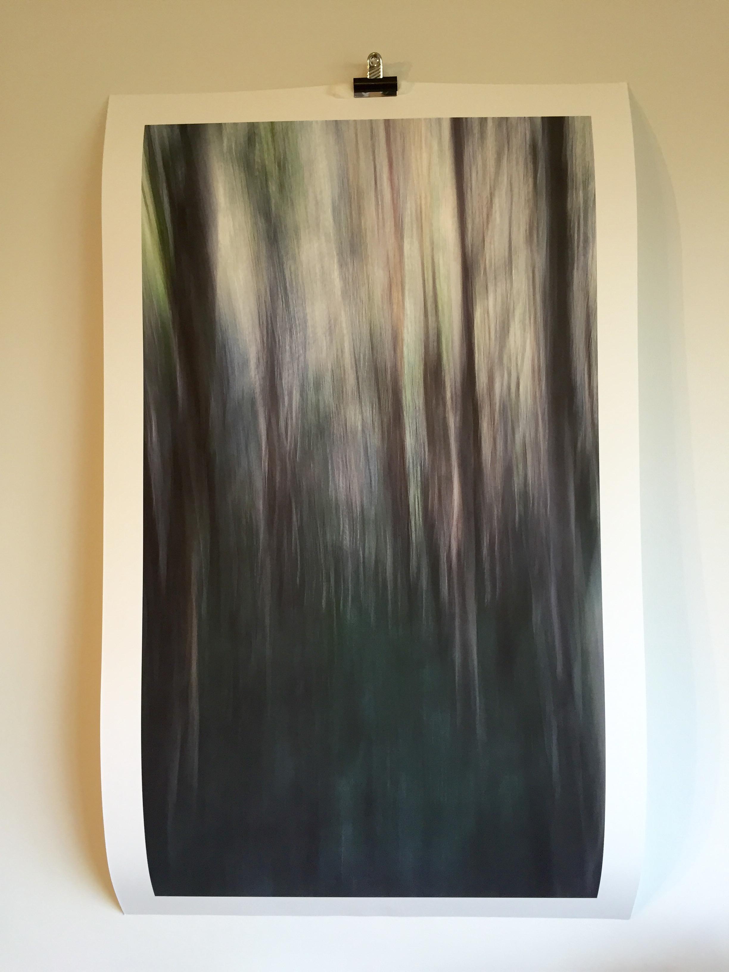 'Paperbark I' ©2015