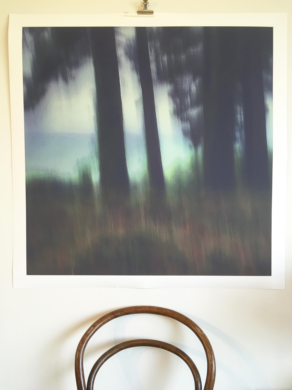 'Hum' ©Sarah Bell