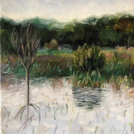 Available: #11 Winter Solstice, Ephemeral Pond