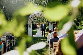 Свадьба Альберта и Валерии
