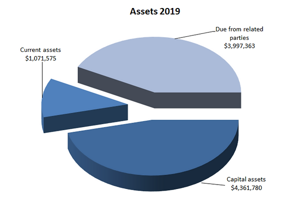 Assets-2019_edited.png