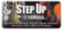 stepup.jpg