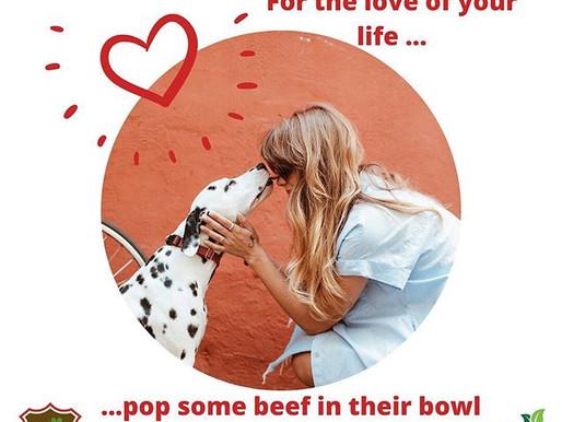 Puppy Love for Valentine's Day