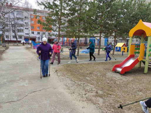 Занятие по скандинавской ходьбе