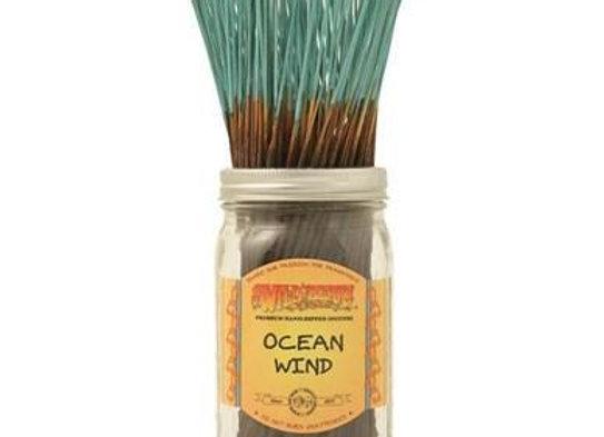 Ocean Wind - Wildberry Stick Incense