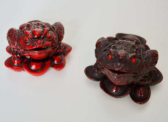 Red Money Frog