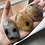 Thumbnail: Dendritic Agate - Palm Stone