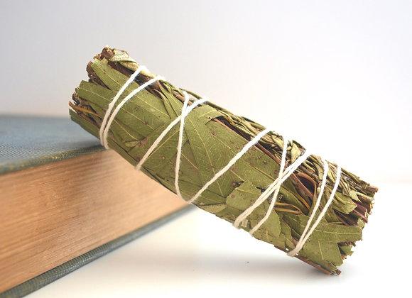 Rosemary + Eucalyptus Bundle - Smoke Wand