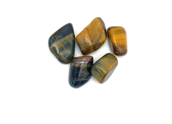 Multicolor Tiger's Eye - Tumbled Stone