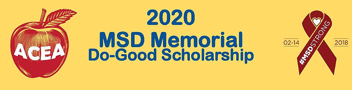 MSD_AD 2020 banner.jpg