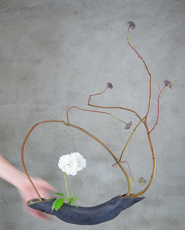 bloem en tuin Cindy Heldens_edited.jpg