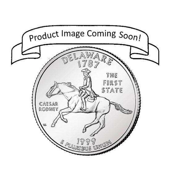 Delaware Quarter Pendant ($20-$80)