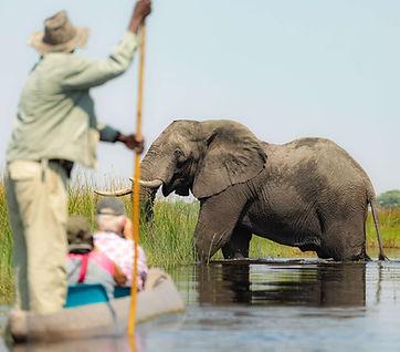 Okavango Delta Mokoro.jpg
