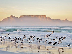Zuid-Afrika Garden Route.jpg