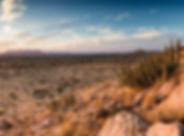 Karoo 1-min.jpg