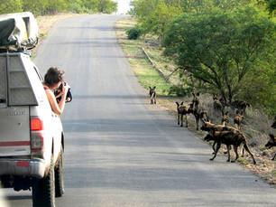 Tips voor natuur- en wildlife fotografie