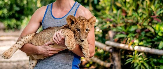 Leeuwen welp duurzaam reizen.jpg