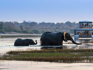 Bezienswaardigheid Namibië: Caprivi strook