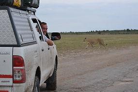 Botswana Safari.jpg