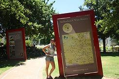 Stellenbosch.jpg