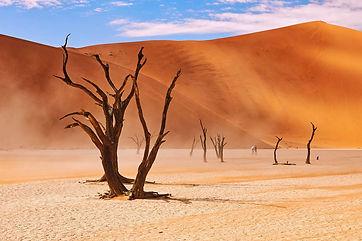 Sossusvlei Namibië.jpeg