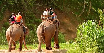 Olifanten rit duurzaam reizen.jpg