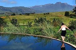 Drakensbergen.jpg