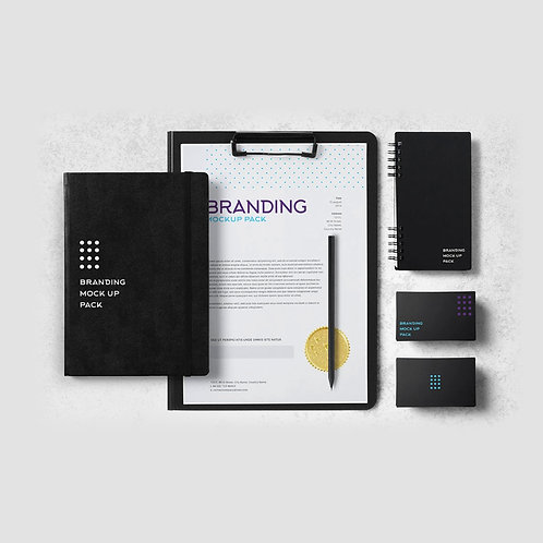 Business Identity Package Platinum
