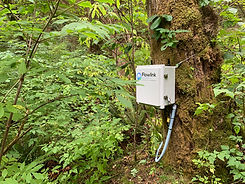 Real-time creek monitoring system
